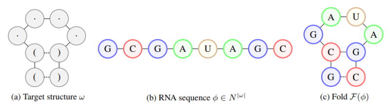 RNA AI