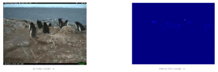 Intel penguin AI