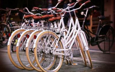 Bicycle Utility Platform