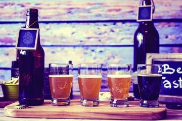 Beer Venture Cover