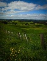 View over the Waimarino Plains