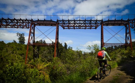 Ride the Old Coach Road at the Taonui Viaduct
