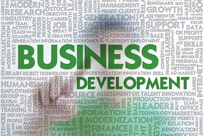 http://blog.realmatch.com/online_media/4-reasons-you-need-business-development-to-monetize-traffic/