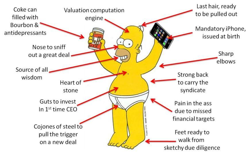 Homer VC Anatomy