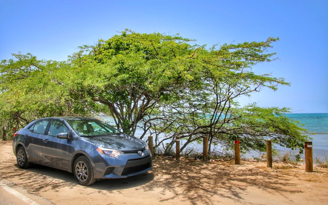 Puerto Rico: Road Tripping East To West