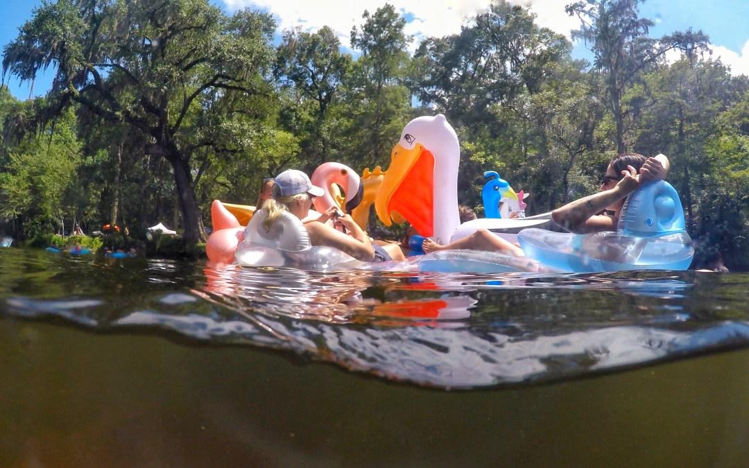 Ginnie Springs, FL: Summer Fun In The Sun