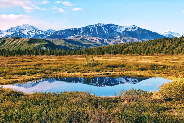 Fielding Lake State Park Alaska