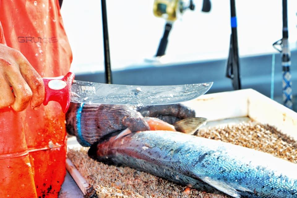 Charter Fishing Homer Alaska