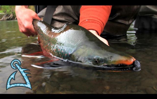 Primal Angler