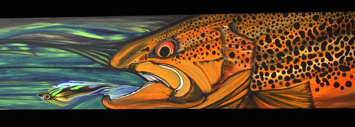 Brad McMinn Brown Trout