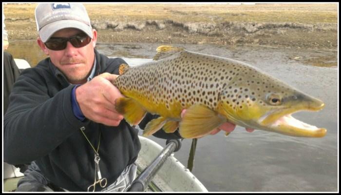 Wyoming Fly Fishing 3