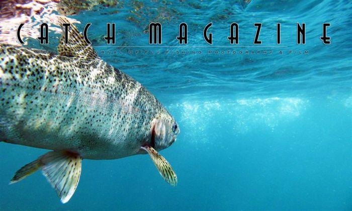 Catch Magazine