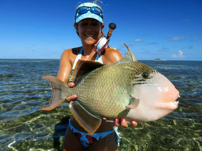 Clare Carter Triggerfish