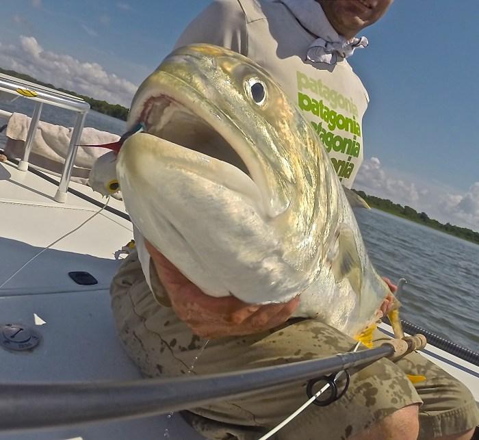 Scott Wagner fly fishing