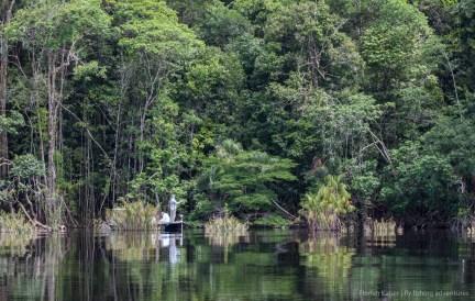 jungle fly fishing