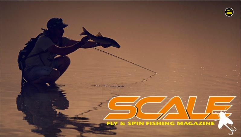 Scale Magazine.jpg