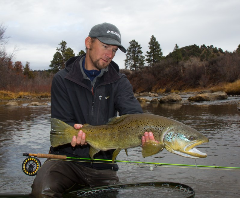 Colorado fly fishing guide RIGS