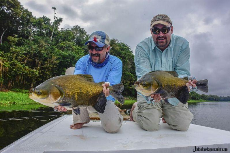 Tambaqui fly fishing