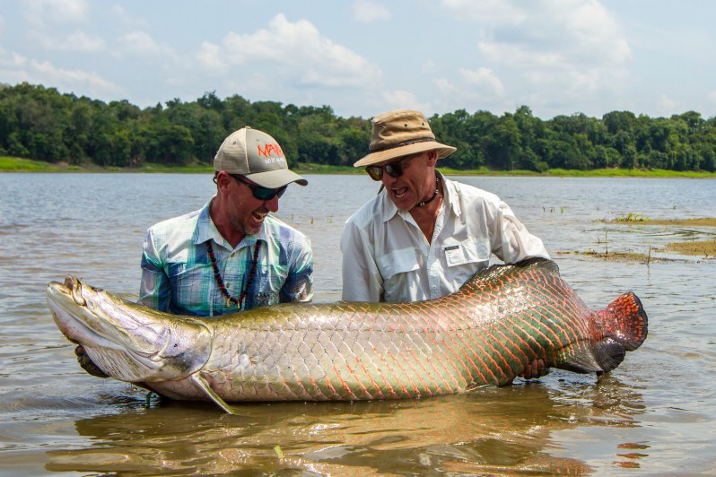 arapaima Brazil fly fishing