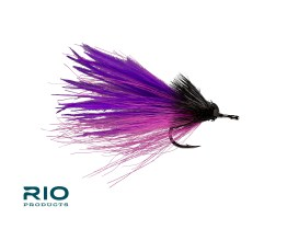 RIO Dread Pirate Purple and Pink
