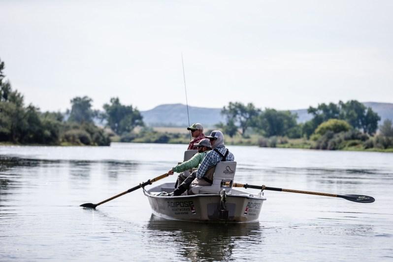 Bighorn fly fish Gregson