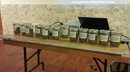 Hops Class, lots of samples to smell