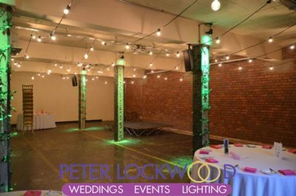 festoon lighting canopy