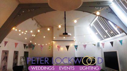 LED Festoon Lights
