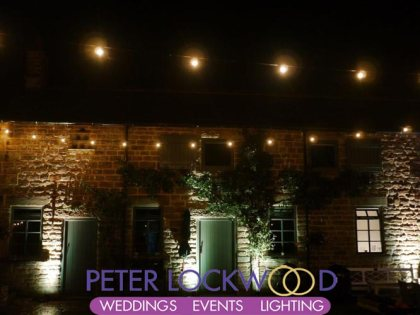 festoon and building lighting