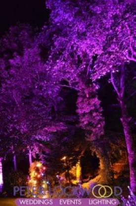purple-wedding-garden-and-tree-lighting