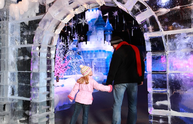 Ice Themed Exhibition Enters Year Two