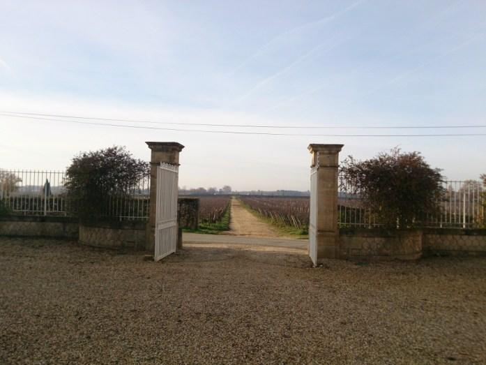 Château Climens sauternes