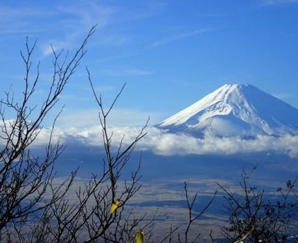 箱根駅伝ランナー番付表2018年冬