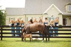 https://veraandharper.com/2013/01/14/allison-bretts-farm-wedding-franklin-tn/