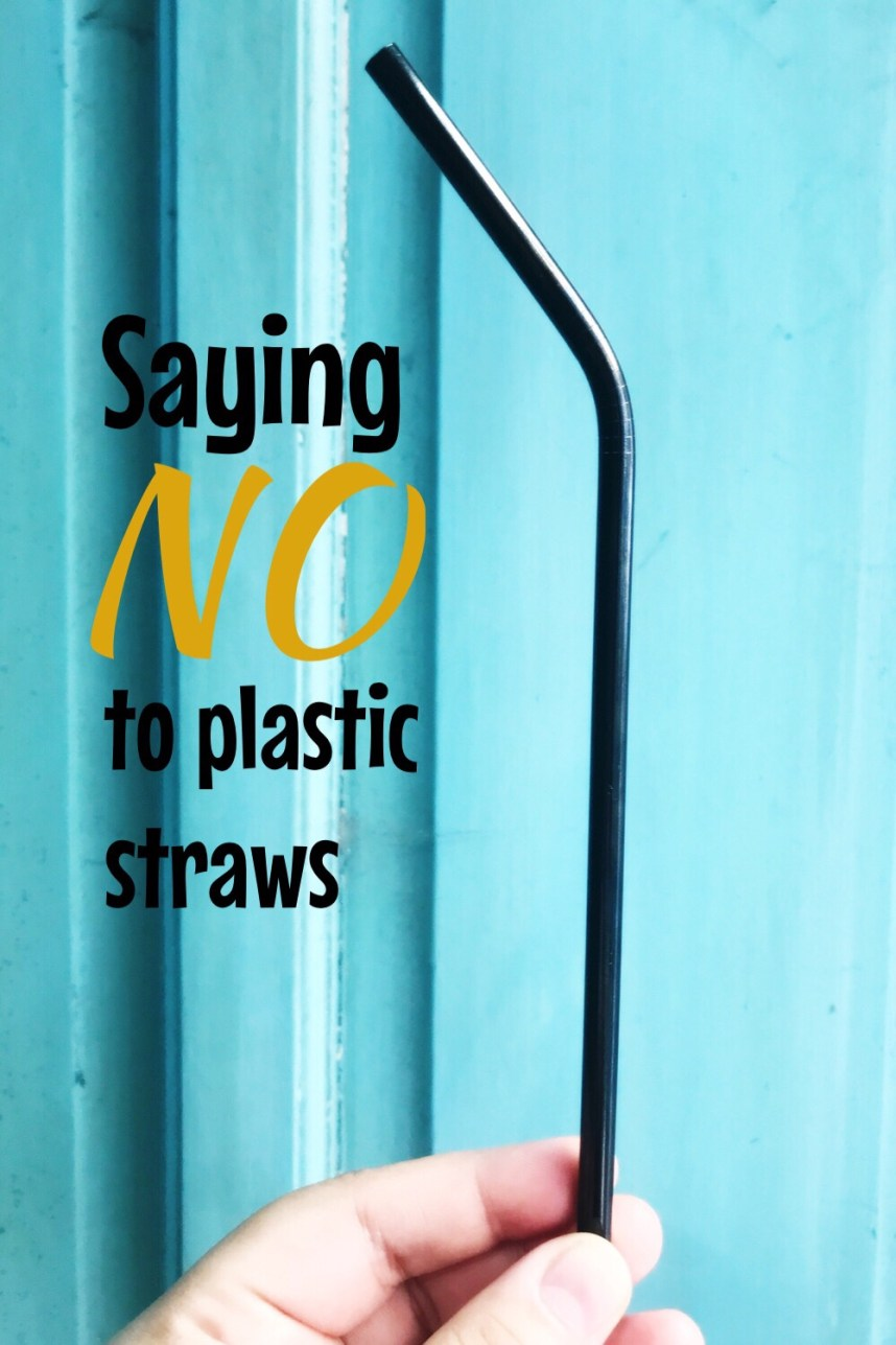 Saying NO to Plastic Straws - overcome challenges to making the switch to reusable straws — http://verabear.net