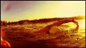 Kraulschwimmen, Kraul Schwimmen, Freestyle Swimming Technique, Kraultechnik, Open Water Swimming, Freiwasserschwimmen, Freiwassertechnik, Schwimmen im See, Schwimmen, Schwimmer, Athlet, Triathlon, Triathlet