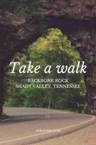 Travel Guides: Hiking Backbone Rock Shady Valley, TN