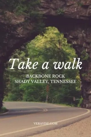 Hiking Backbone Rock In Shady Valley TN