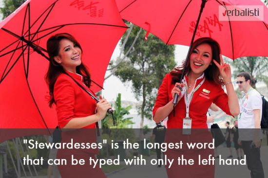 Fun facts about stewardesses, Verbalisti