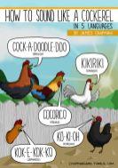 How to sound like a cockerel