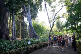 FEDELE 2018 Tenerife 20
