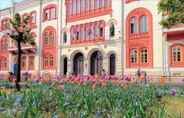 Sajam stipendija Univerziteta u Beogradu 2