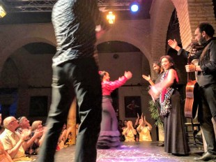 Agents and schools at the Flamenco Show in the Museo del Baile Flamenco in Seville