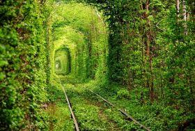 the Tunnel of Love in Kleven, Ukraine