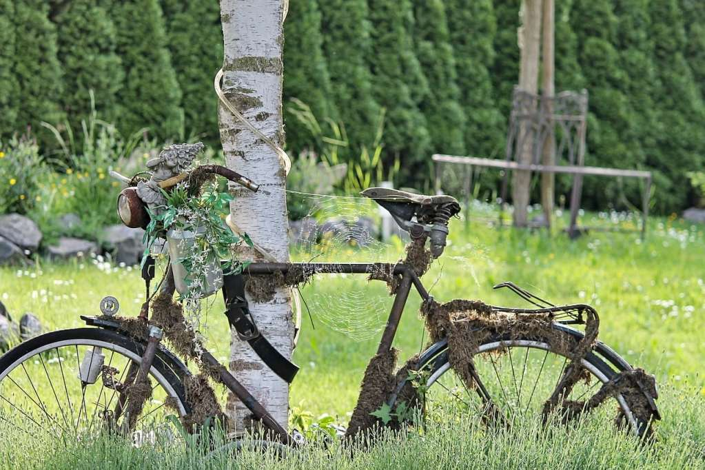 bike, rusty, overgrown