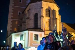 Andreas Habash Stadtfest Cham 2016 DSC01622
