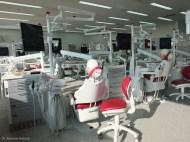 habash-andreas-curriculum-endodontie-generalisten-iidscf8565