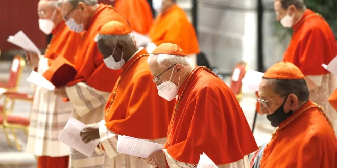 La ONU insta a la iglesia católica a no encubrir sacerdotes y hacer justicia contra las violaciones