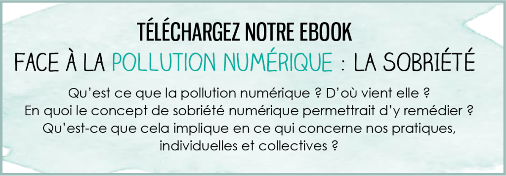 ebook pollution numerique