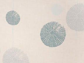 Sea Urchins | Aquatic | Close Up